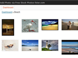 Free Stock Photos Foter Plugin